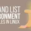Setting environment variables in Linux