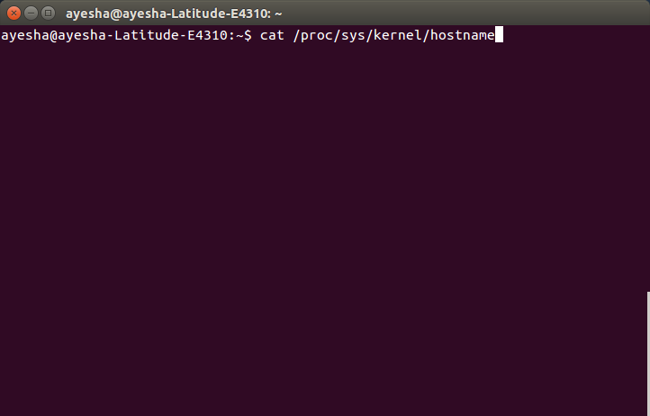 Show contents of / proc / sys / kernel / hostname