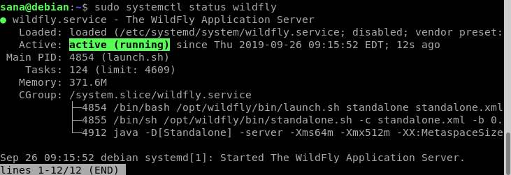 Check wildfly service status