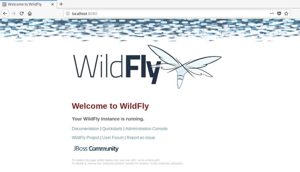 Access WildFly