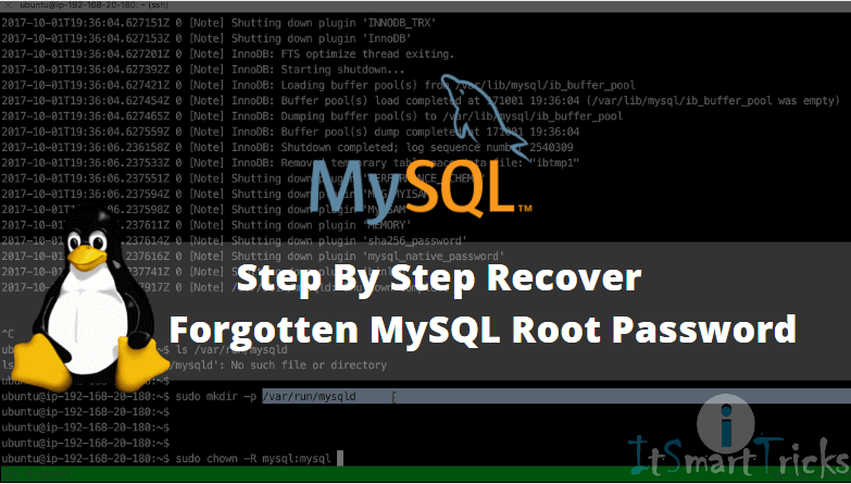 Step by step recovery of a forgotten MySQL root password