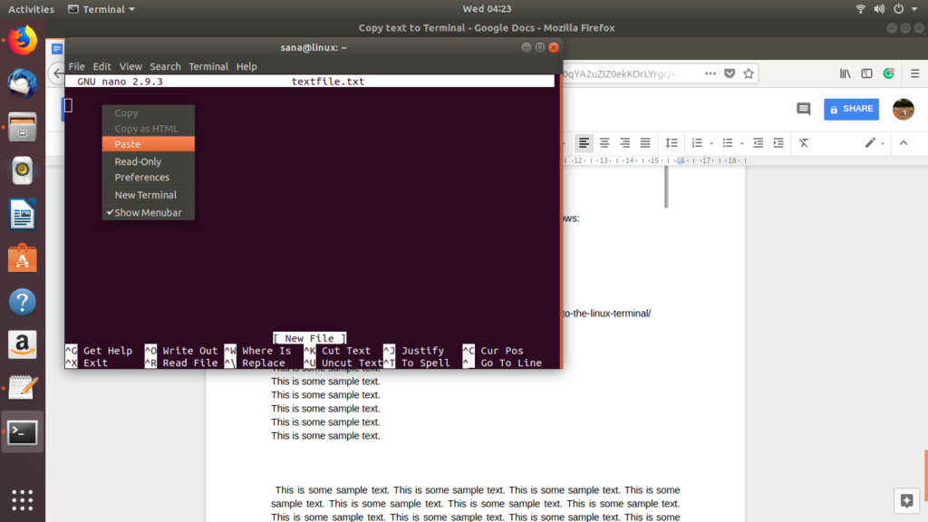 Paste a piece of text into the command line