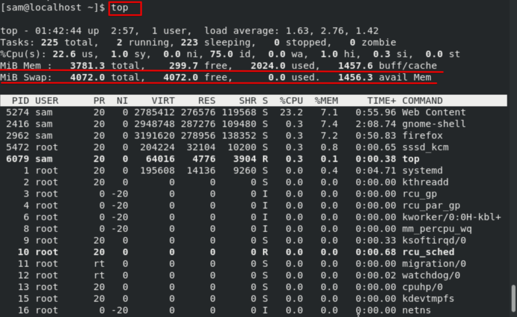 Get memory usage with the top command