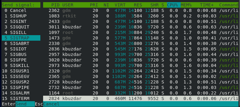 Kill a process with htop