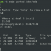 Using parted command to list hard disk partitions