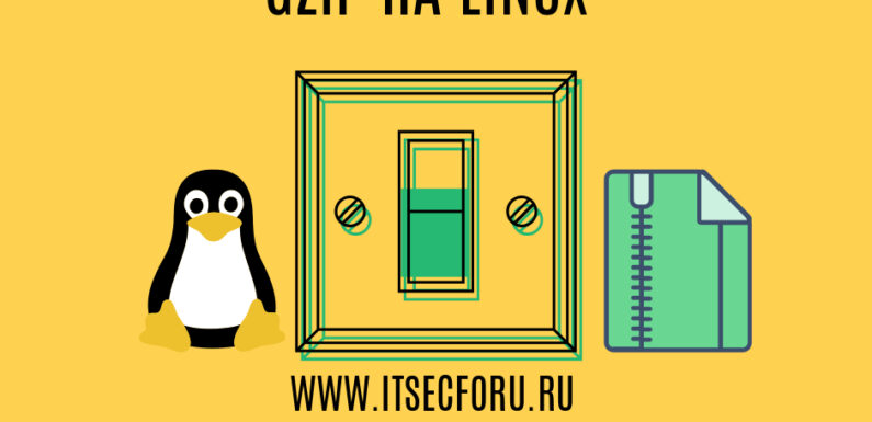 🐧 How to Gzip and Save Source File on Linux
