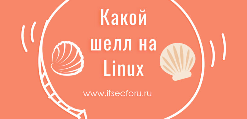 🐚 How to check which shell you are using on Linux