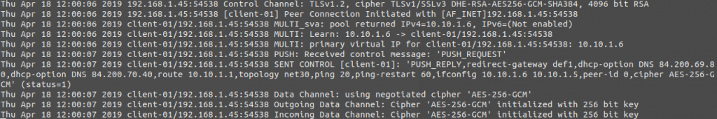 We look at the log file of the OpenVPN server