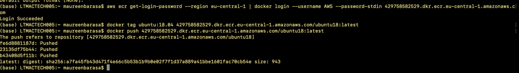 "Resolve Docker ""You have reached the speed limit"" AWS error"