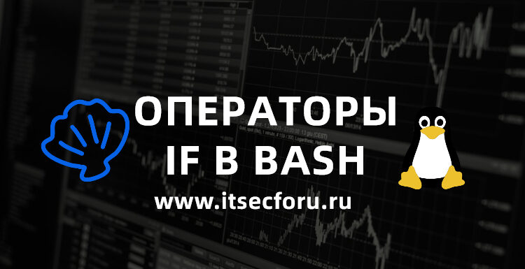 🐧 Bash if statements: if, elif, else, then, fi