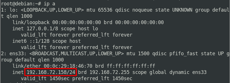 Using the ip command